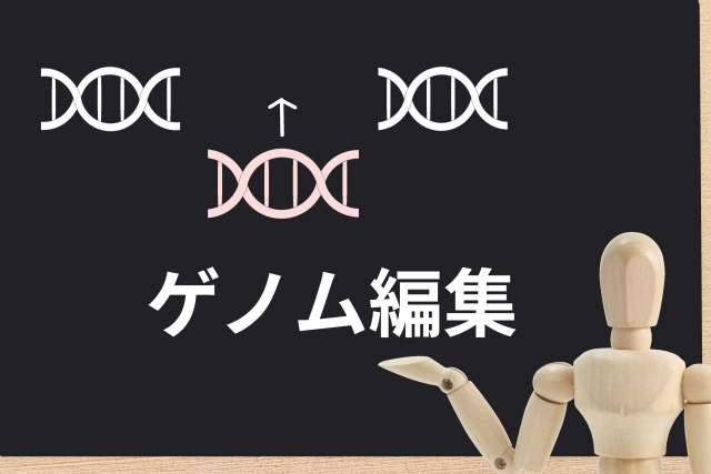 ゲノム編集